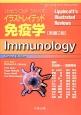 イラストレイテッド免疫学<原書2版>