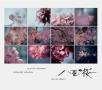 NHK大河ドラマ 「八重の桜」 コンプリート盤
