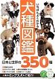 いちばんよくわかる犬種図鑑 日本と世界の350種 日本と世界の350種