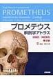 プロメテウス解剖学アトラス 頭頸部/神経解剖<第2版>