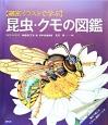 【細密イラストで学ぶ】昆虫・クモの図鑑 重ねて楽しむイラスト透明シート付