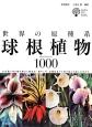 世界の原種系球根植物1000 250属1000種の紹介と栽培法・殖やし方・品種改