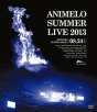 Animelo Summer Live 2013 -FLAG NINE- 8.24