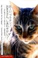 おーい、フクチン!おまえさん、しあわせかい? 54匹の置き去りになった猫の物語