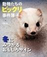 動物たちのビックリ事件簿 冬にみつかるおもしろサイン (4)