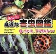 調べよう!身近な害虫図鑑 イナゴ、アブラムシなど (2)