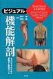 ビジュアル機能解剖 セラピストのための運動学と触知ガイド