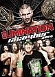 WWE エリミネーション・チェンバー2014