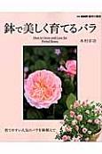 鉢で美しく育てるバラ 育てやすい人気のバラを鉢植えで