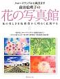 前田絵理子の花の写真館 花の美しさを色彩豊かに明るく表現する クローズアップから風景まで