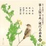 箏・三弦 古典/現代名曲集(二十五)