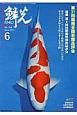 鱗光 2014.6 第31回錦鯉全国若鯉品評会