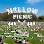 Mellow Picnic produced and mixed by Naturally