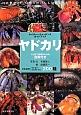 ヤドカリ ネイチャーウォッチングガイドブック 日本各地のヤドカリ オカヤドカリ200種