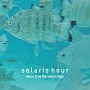 music from the solaris hour