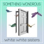 SOMETHING WONDROUS(DVD付)
