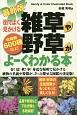 街でよく見かける 雑草や野草がよーくわかる本<最新版> 収録数600種以上!