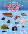 海の生きもののなかま さがして海ハカセ1 貝のなかまはどれ?