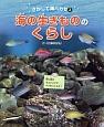 海の生きもののくらし さがして海ハカセ3 同じ魚のオスとメスでペアをつくろう!