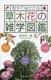 散歩で見かける 草木花の雑学図鑑 季語 花言葉 名前の由来