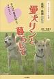 愛犬リンと暮らして<前編・続編改訂版> 恋人ならぬ恋犬同士?リキとリン