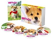 幼獣マメシバ 望郷篇 DVD-BOX
