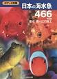 日本の海水魚466<第2版>