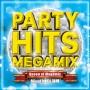 PARTY HITS MEGAMIX ~Queen of Megamix~ mixed by DJ 瑞穂