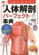 これでわかる!人体解剖パーフェクト事典