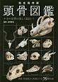 頭骨図鑑<完全保存版> 肉食・草食獣から魚類まで全76種収録 ホネの世界は美しく面白い!