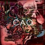 CAO(通常盤)