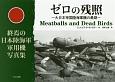 ゼロの残照 終焉の日本陸海軍軍用機写真集 大日本帝国陸海軍機の最期