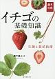 イチゴの基礎知識