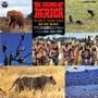 アフリカ大自然のシンフォニー
