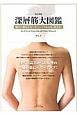 深層筋大図鑑<改定新版> 痛みの部位がピンポイントでわかり、消える!