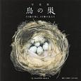 鳥の巣 写真集