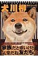 犬川柳 柴犬ウォッチ 五・七・五で詠むイヌゴコロ!