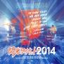 TEENAGE LOCK FES! 閃光ライオット2014