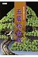 作業実例から学ぶ 五葉松盆栽 プロの作業実例で「こんな時どうする」がよく分かる