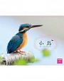小鳥 カレンダー 2015