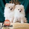 ポメラニアンカレンダー 2015