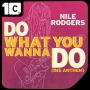DO WHAT YOU WANNA DO (IMS ANTHEM) REMIXIES