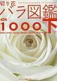 切り花 バラ図鑑1000(下) グリーン ホワイト イエロー オレンジ ブラウン ベージュ パープル