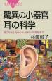 驚異の小器官耳の科学 聞こえる仕組みから、めまい、耳掃除まで