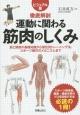 徹底解剖 運動に関わる筋肉のしくみ<ビジュアル版> 筋と関節の基礎知識から部位別トレーニング法、スポー