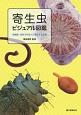 寄生虫ビジュアル図鑑