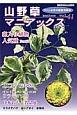 山野草マニアックス 斑入り植物人気種◆福寿草◆ウラシマソウ おもと 老鴉柿 ファン必見の徹底攻略本!(41)