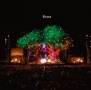 Tree(DVD付)