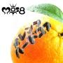 オレンジハードコア
