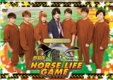 HORSE LIFE GAME